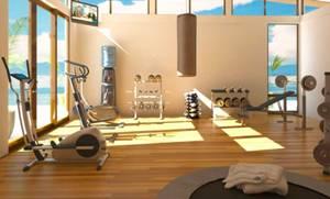оборудованиt спортивного зала в доме